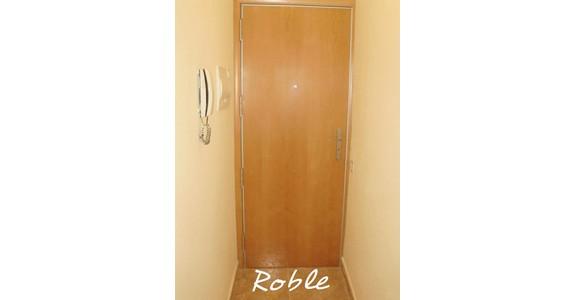 Oferta de Puerta blindada modelo Roble